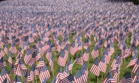 American flags on Boston Common