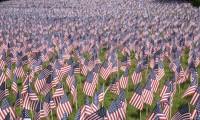 American flags on Boston Common